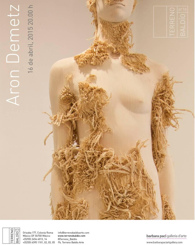 Aron Demetz - Terreno Baldìo Arte - Mexico | Aprile 2015