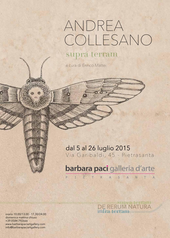Andrea Collesano - De Rerum Natura, Supra Terram - Pietrasanta | Luglio 2015
